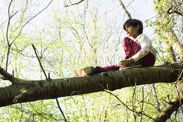 Boy sitting on tree branch