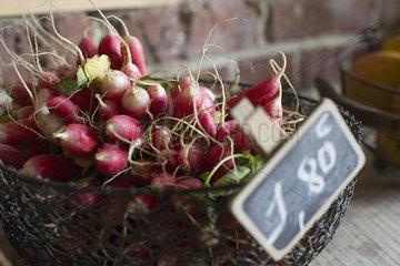 Fresh radishes in basket