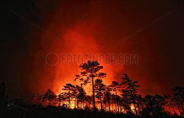 Waldbrand in Kroatien