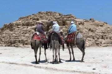 Kameltreiber an den Pyramiden von Gizeh