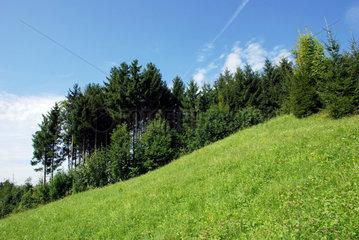 Landschaft im Allgaeu