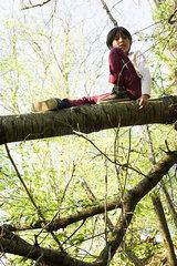 Boy sitting on tree branch