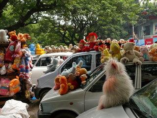 Stofftiere auf dem Pondy Bazar