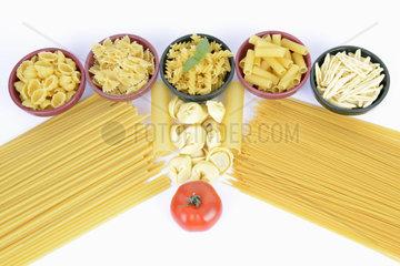 verschiedene italienische Pasta  Spaghettini  Spagetti  Cannelloni  Maccheroncini  Maccaroni  Tortellini  Fagiolini  Fusilli  Rigatoni  Farfalle  Gnocchi  Teigwaren  Nudeln  Tomate  Basilikum