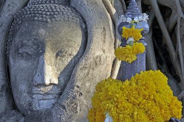 Thailand: Sandsteinbuddha  Wat Mahathat  Ayutthaya