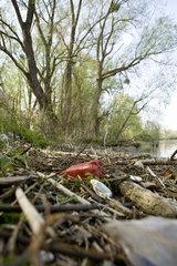 Trash by lake