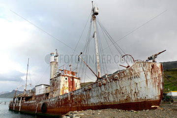 Antarktis: Schiffswrack des Walfangschiffes Petrel
