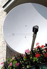 Satelittenschuessel und Balkonblumen