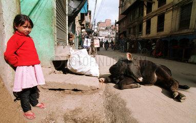Maedchen und heilige Kuh in Kathmandu  Nepal