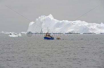 Ilulissat  Daenemark  Fischkutter vor einem Eisberg in der Diskobucht