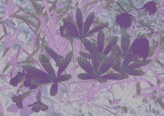 Fleur du mal Muster