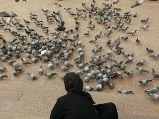 Muslima mit Kopftuch beim Tauben fuettern