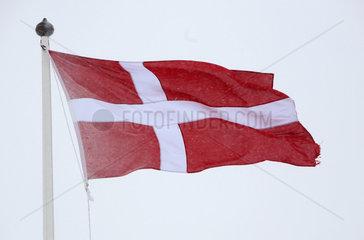 Malung  Schweden  Nationalfahne von Daenemark weht im Wind