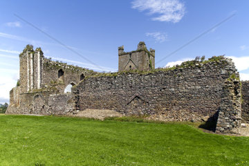 verfallenes Kloster  County Wexford  Irland