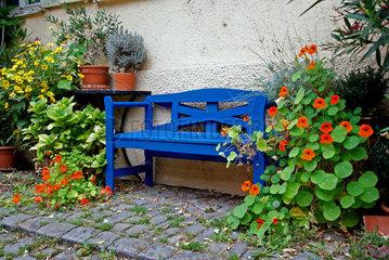 Altstadtidylle mit blauer Parkbank und Blumen