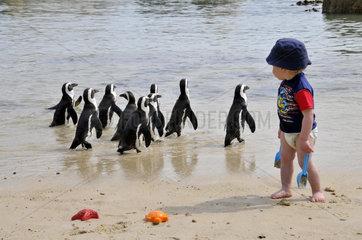 Kleiner Junge am Strand mit Pinguinen in Suedafrika