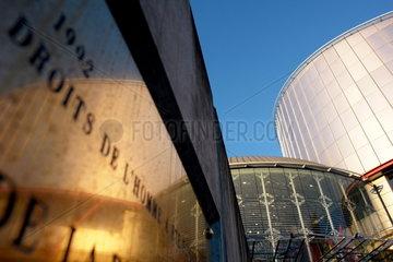 Der Europaeische Gerichtshof fuer Menschenrechte