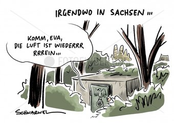 Erdrutschsieg : AfD punktet vor allem in Sachsen