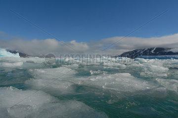Treibeis am Monacogletscher in Spitsbergen (Norwegen)