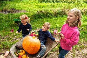 Kuerbisernte auf dem Bauernhof-Kindergarten Wilkenshoff