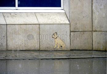 Streetart  Paste up  Cut out eines Hundes an einer Hauswand im Regen