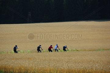 Radfahren zwischen Feldern