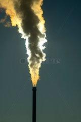 Rauchender Schornstein eines modernen mit Biomasse betriebenen Heizkraftwerks  Ulm