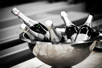 champagne bottles in a cooler