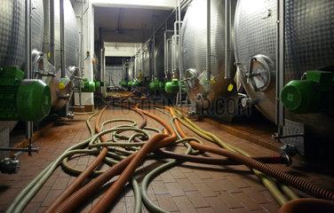 Weinkeller des Weinguts Peter Mertes