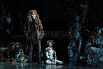 Musical CATS im CAPITOL Theater in Duesseldorf