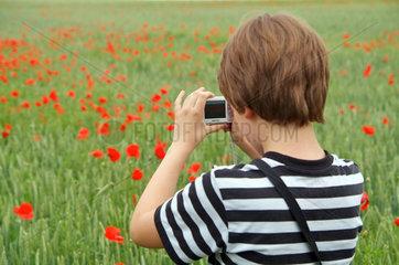 Junge fotografiert Mohnblumen