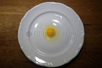Neu Kaetwin  Deutschland  rohes Spiegelei auf einem Teller