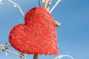 Heart shaped ornament on dried plant stalk