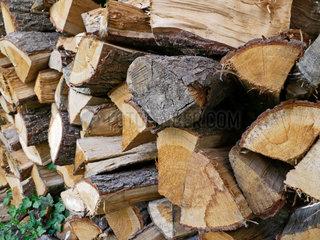 Holzscheite fuer den Kamin