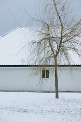 Bare tree and house in winter