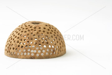 Natural decorative object