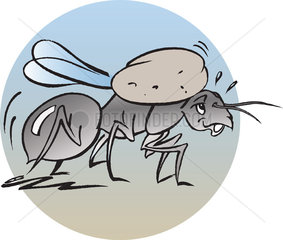 Ant carrying food