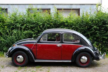 Schwarz-roter Volkswagen Bj. 1953