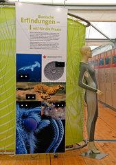 Bionische Erfindungen