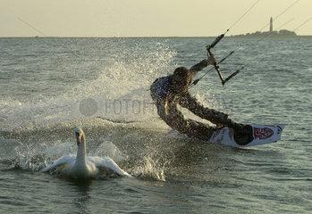Orth  Kite-Surfer auf Fehmarn in der Ostsee