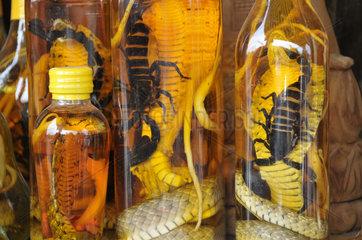 Kambodscha: Schlangenschnaps