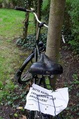 Fahrrad am Baum