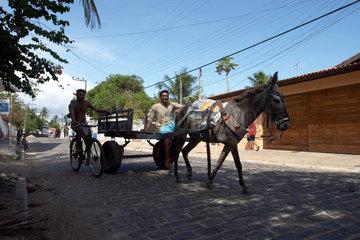Zwei Maenner mit einer Eselkarre in Taiba  Brasilien