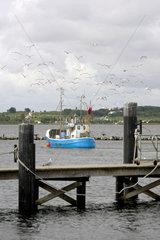 Fisch-Kutter auf Fehmarn