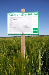 Saatgut-Vermehrung