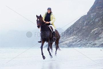 Man riding horse on beach