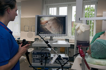 Vivantes Endoscopic Training Center Berlin