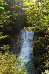 Isny  Wasserfall