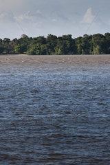 South America  Amazonia  waterscape