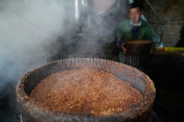 #CHINA-GUANGXI-CAMELLIA OIL-EXTRACTION(CN)